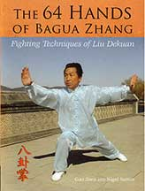 64 Hands of Bagua Zhang