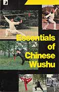 Survey text on Chinese Martial Arts @ plumpubcom