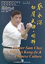 pak mei southern kung fu