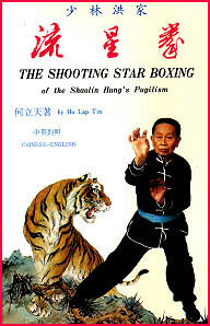 Shooting Star Hung Gar Kung Fu
