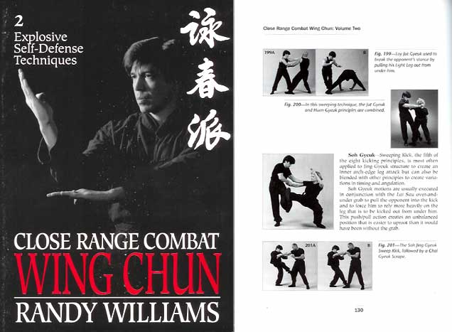 wing chun techniques for beginners pdf