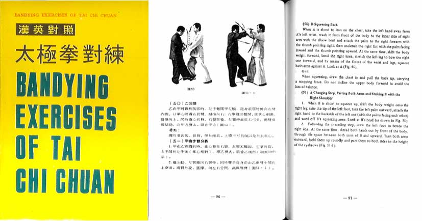 chinese martial arts essay Martial arts essays: over 180,000 martial arts essays, martial arts term papers, martial arts research paper, book reports 184 990 essays.