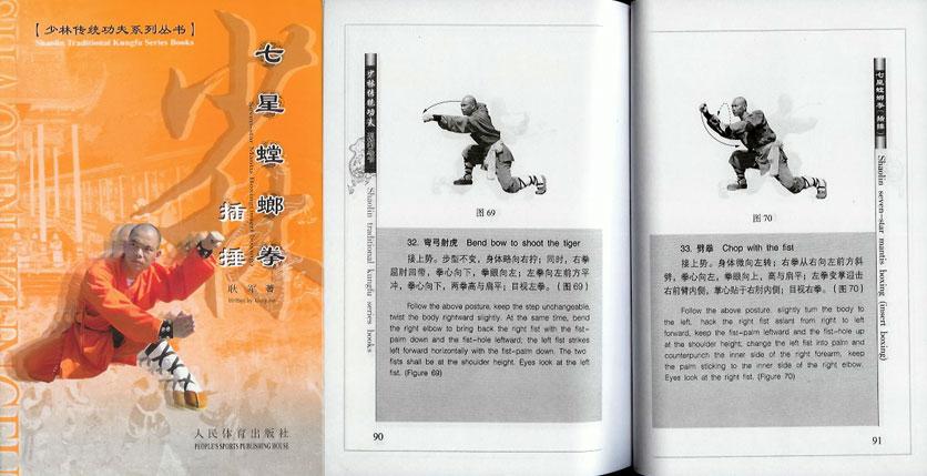 Shaolin Kung Fu Praying Mantis style