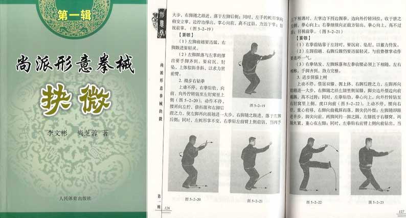 shang style xing yi quan