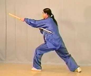 Tai Chi Short Whip Stick