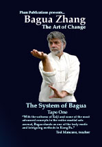 Bagua Art of Change DVD Ted Mancuso at Plum Publications