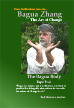 Bagua Art of Change DVD: The Bagua Body Ted Mancuso Plum Publications