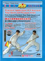 Wu Shi Jun Kung Fu teacher @plumpub.com