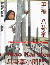 Yin style Bagua with Tony Yang @ plumpub.com
