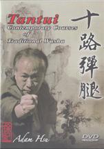 Adam Hsu teaches Tan Tui Kung Fu