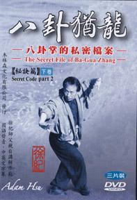 Adam Hsu Chen Tai Chi Lao Jia form