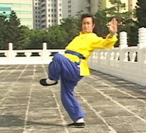 Porf Jou Kung Fu