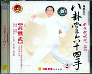 Gao style Bagua 64 Hands #2