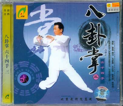 Gao style Bagua 64 hands #1