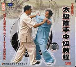 Tai Chi Push Hands training level