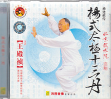 Special Yang Tai Chi training