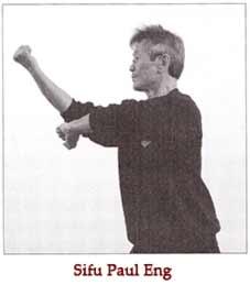 kung fu basics by paul eng pdf
