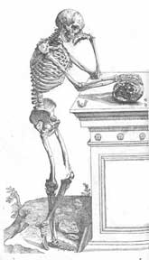 anatomyreview1
