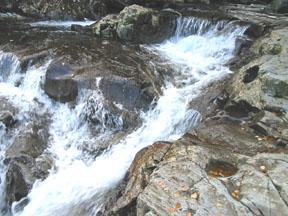 zorya_water1