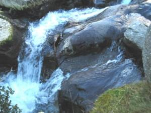 zorya_water3