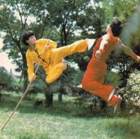 Kung Fu Staff Kick