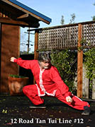 Plum Publications free tutorial Tan Tui Kung Fu Rod #12