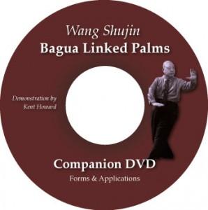 Wang Shujin's Bagua Linked Palms DVD with Kent Howard @plumpub.com
