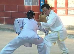 Chen Taijiquan Push Hands