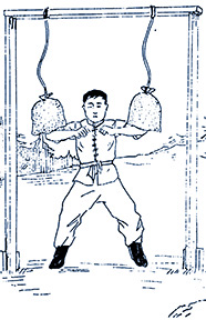 1Kun g Fu Shoulder Training @plumpub.com