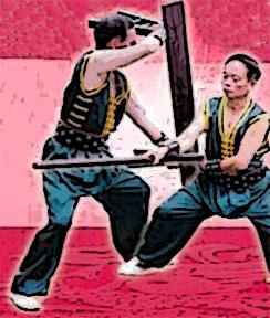 Mei Shan Kung Fu