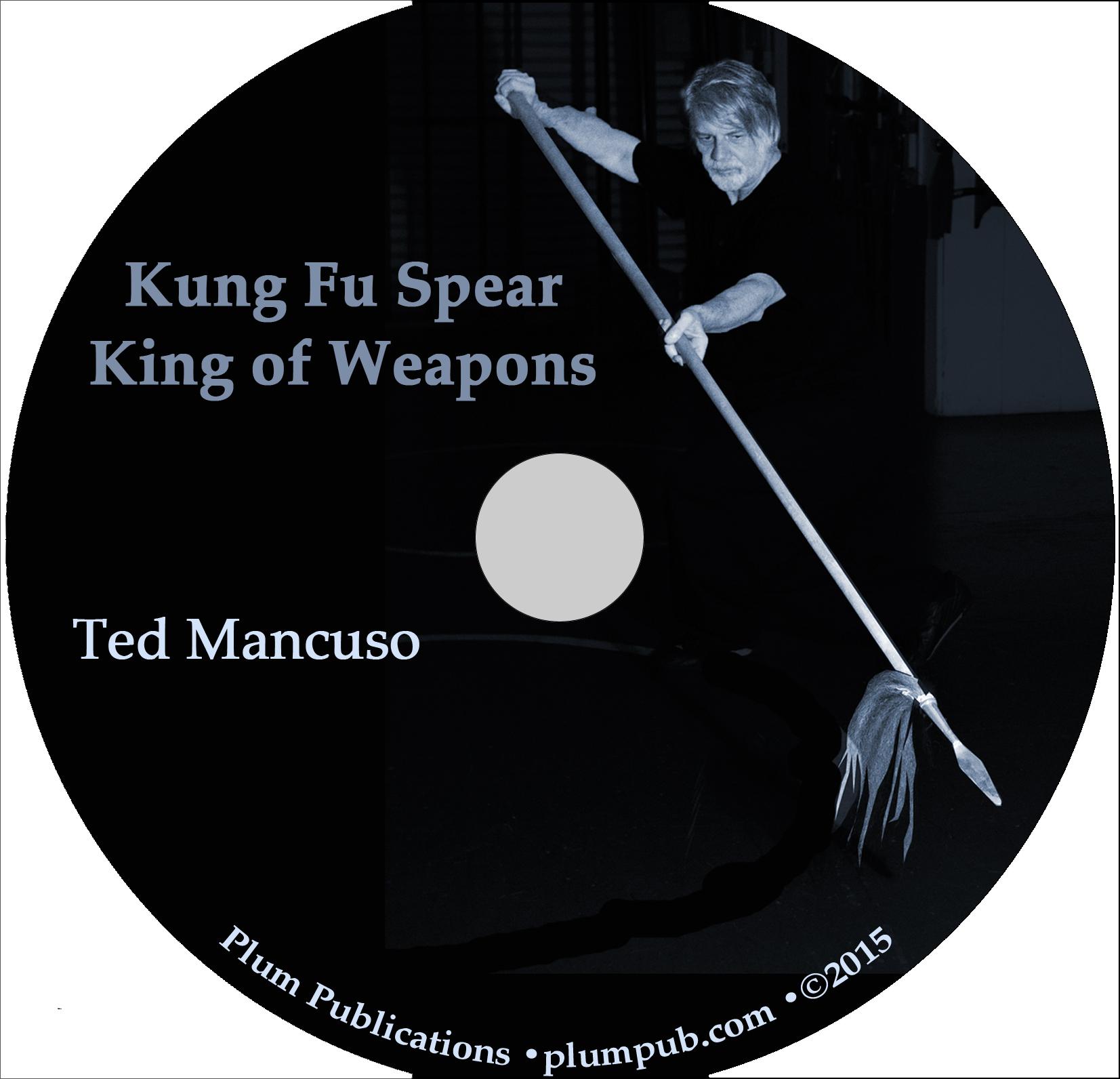 kung fu training manual pdf
